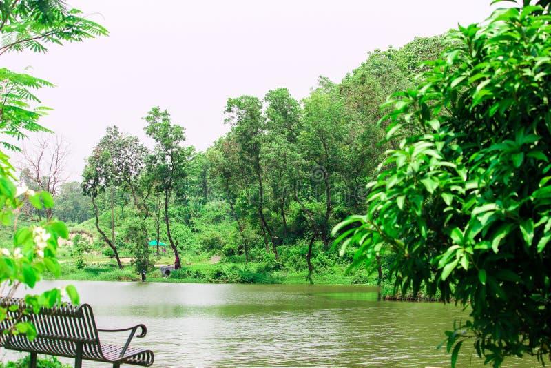 在峰顶附近的风景自然,河风景 免版税库存照片