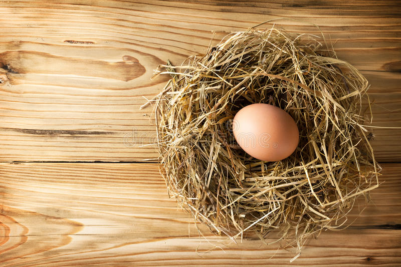 在嵌套的鸡蛋 免版税图库摄影