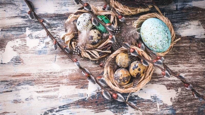 在巢和杨柳分支的复活节彩蛋 复活节装饰 土气表面 r 图库摄影