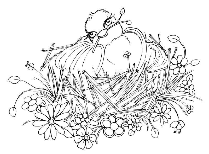 在巢图画的鸟 免版税库存照片