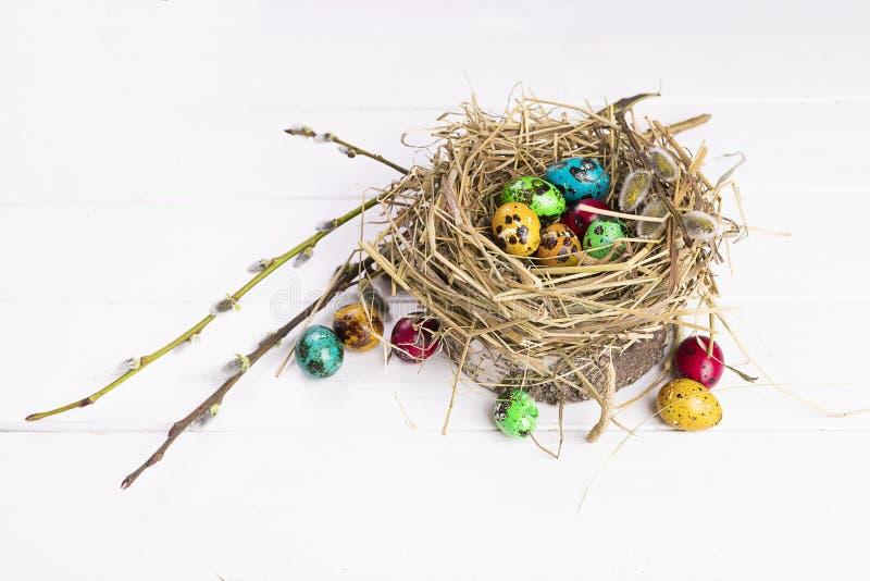 在巢复活节彩蛋的鹌鹑蛋与在一张白色桌上的一个杨柳分支 明亮的复活节 免版税库存图片
