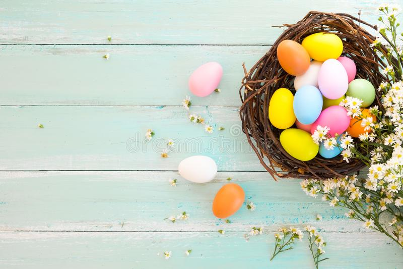 在巢的五颜六色的复活节彩蛋与在土气木板条背景的花在蓝色油漆 在春季的假日 免版税库存图片
