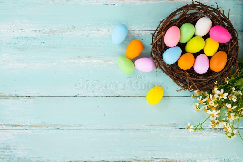 在巢的五颜六色的复活节彩蛋与在土气木板条背景的花在蓝色油漆 库存照片