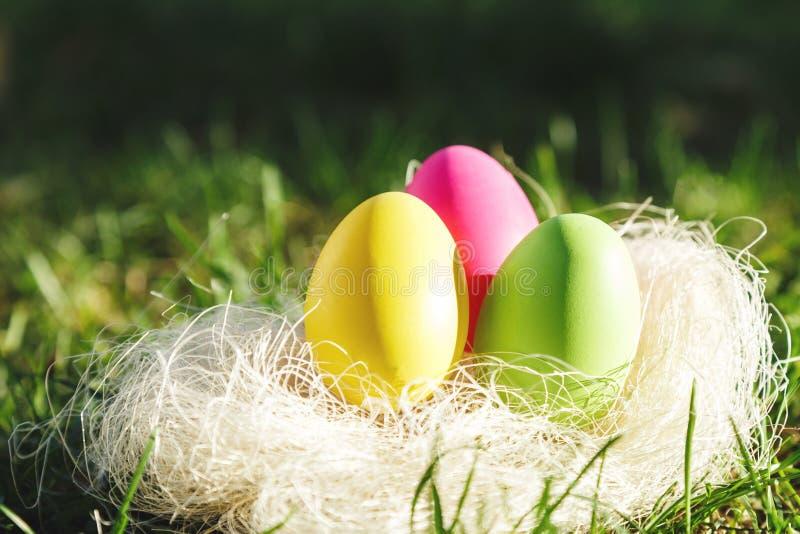 在巢的五颜六色的复活节彩蛋在与sunlights的春天绿草 复活节狩猎 愉快的复活节 免版税库存照片