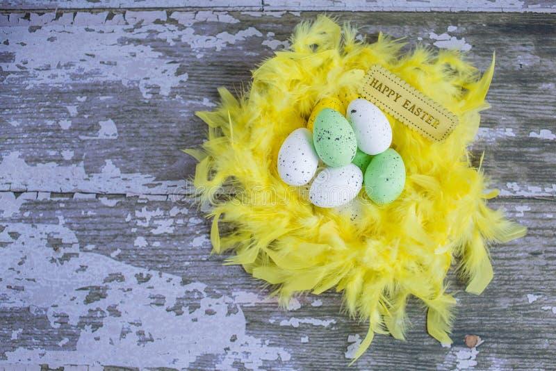 在巢的五颜六色的复活节彩蛋在木背景 库存图片