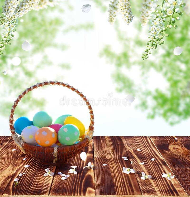 在巢的复活节彩蛋在土气木桌上 库存图片