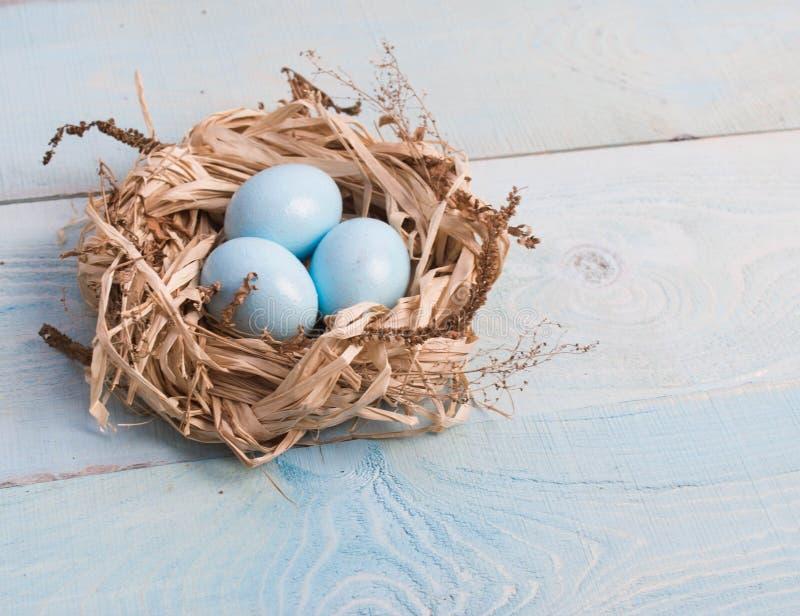 在巢的蓝色复活节彩蛋在木背景 图库摄影