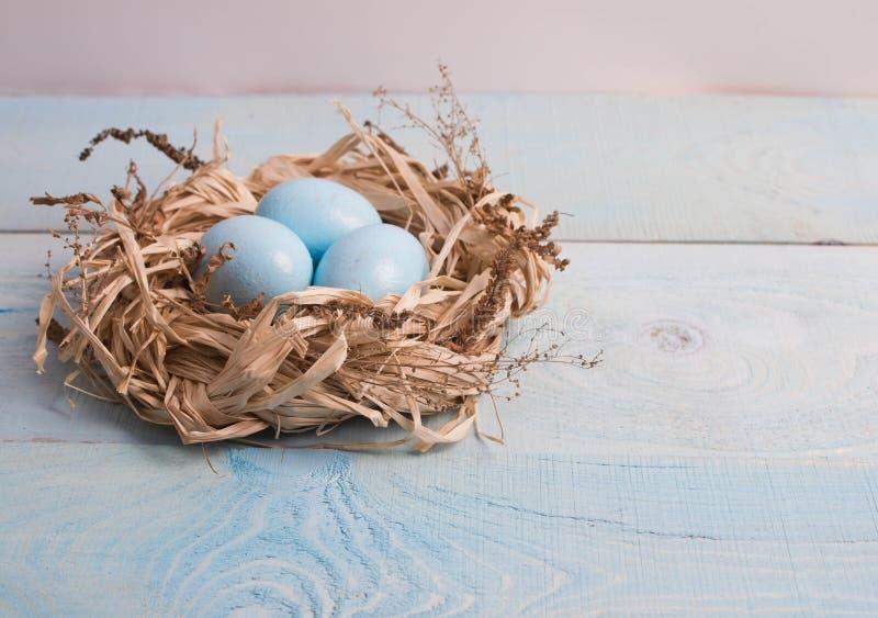 在巢的蓝色复活节彩蛋在木背景 库存图片
