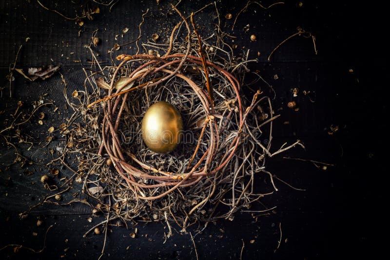 在巢的金黄鸡蛋 免版税图库摄影