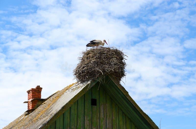 在巢的鹳在老农村房子屋顶  免版税库存图片