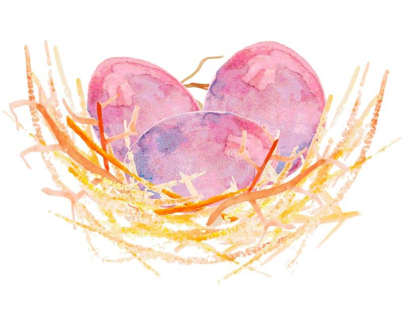 在巢的水彩鸡蛋 向量例证