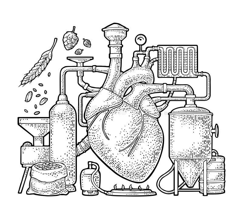 在工厂啤酒与坦克,燃烧器,心脏的啤酒厂过程 库存例证