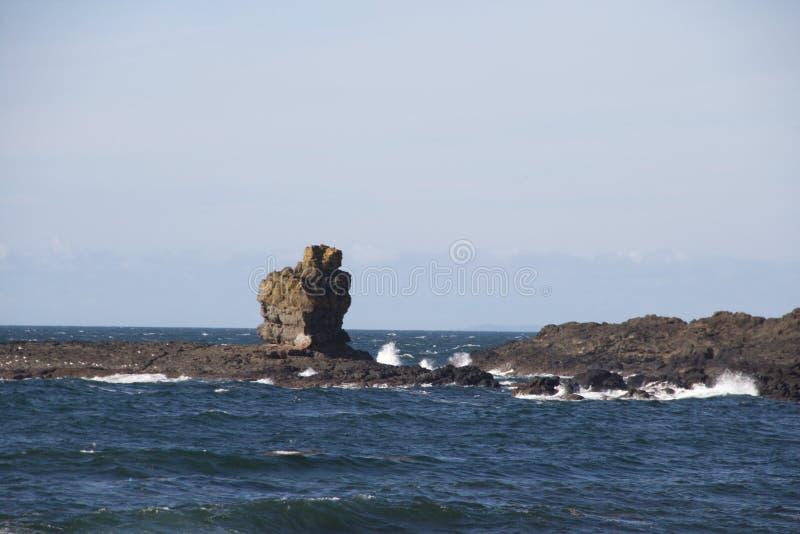 在巨人堤道的岩层 库存照片