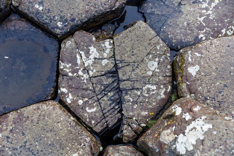 在巨人堤道的石头 图库摄影