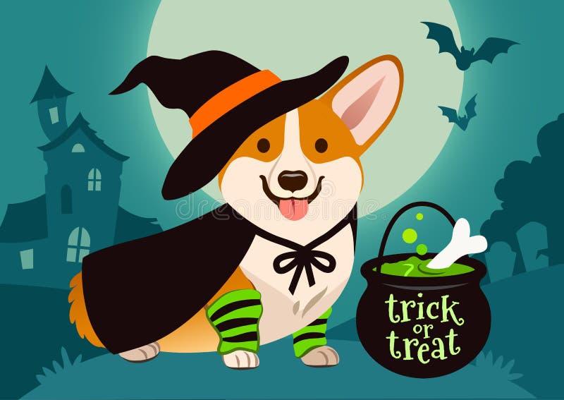 在巫婆服装,黑h的万圣夜逗人喜爱的微笑的威尔士小狗狗 皇族释放例证