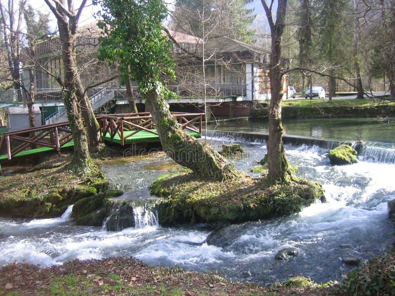 在巴伊纳巴什塔附近的河Vrelo 免版税库存图片