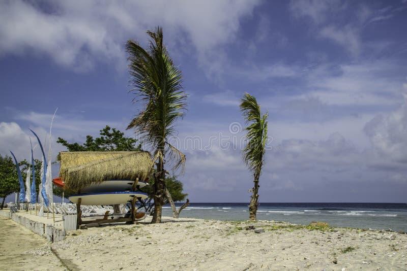 在巴厘岛印度尼西亚冲浪板租务的海滩 库存图片