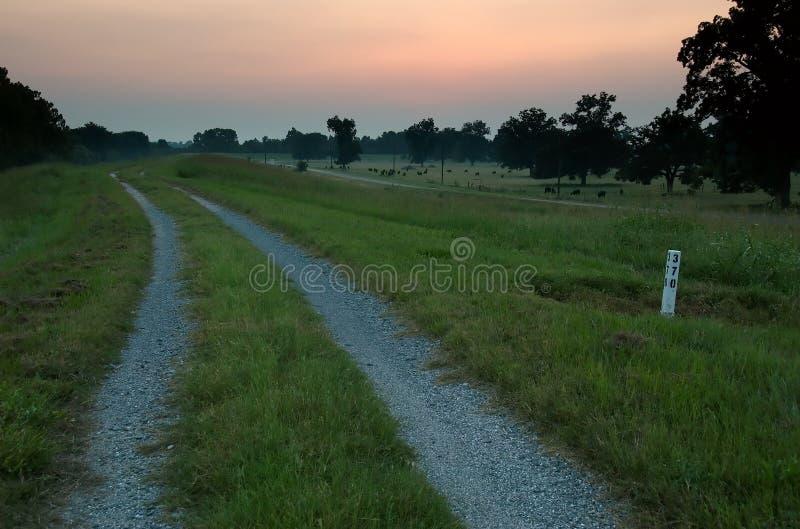 在巴吞鲁日附近的密西西比河堤坝 库存照片