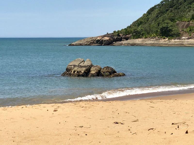 在巴西西南的美丽的海滩 免版税库存照片