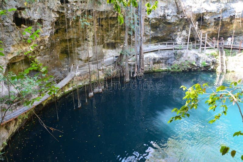 在巴里阿多里德墨西哥附近的Cenote XÂ'Canché 免版税库存图片