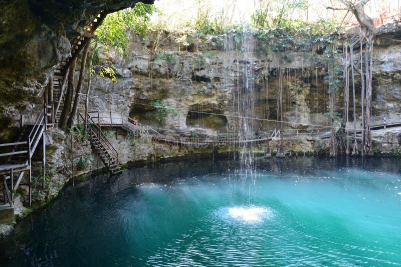 在巴里阿多里德墨西哥附近的Cenote XÂ'Canché 库存图片