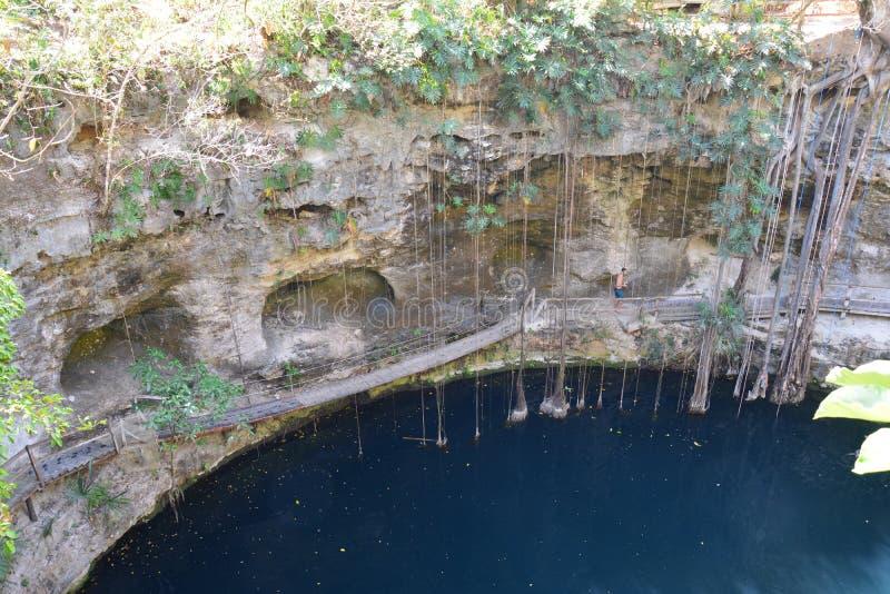 在巴里阿多里德墨西哥附近的Cenote XÂ'Canché 免版税库存照片