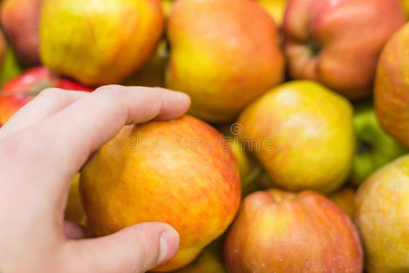 在市场上的红色苹果 库存图片