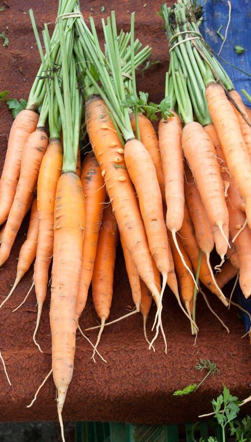 在市场上的红萝卜待售 库存照片