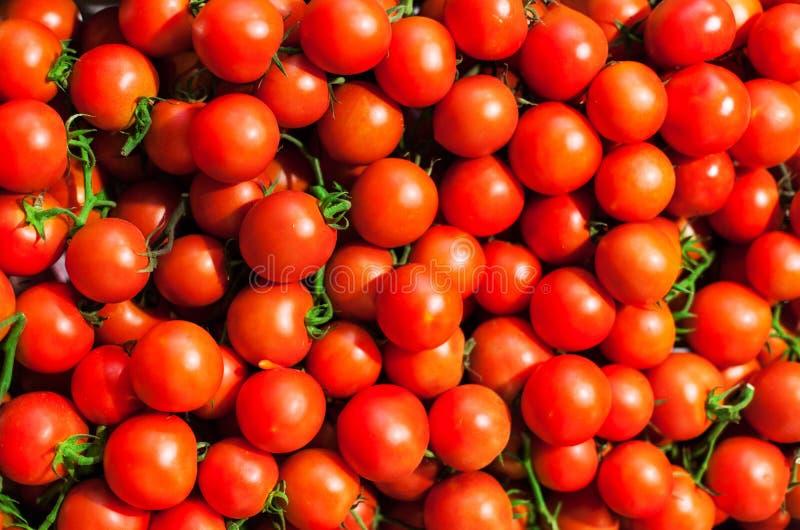 在市场关闭的红色西红柿,也许使用作为背景 库存照片