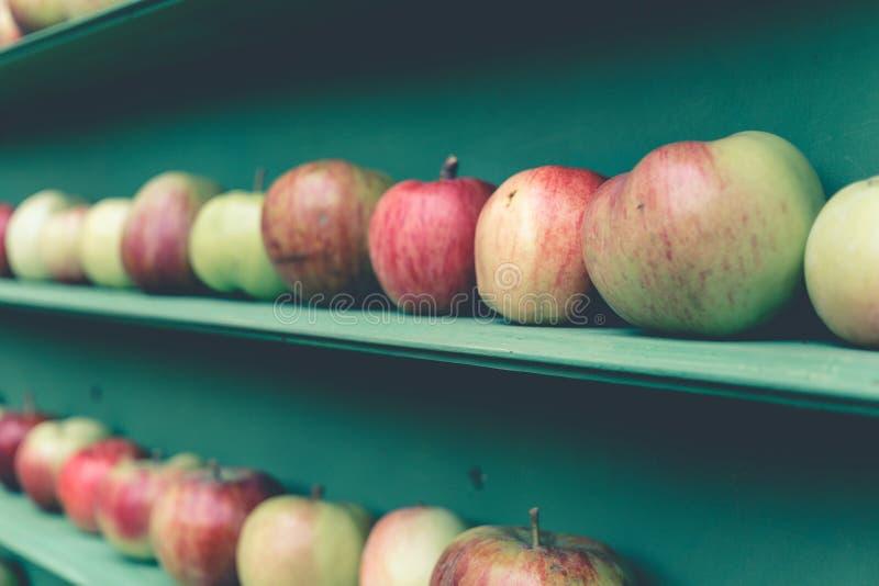 在市场架子的新红色和绿色苹果健康果子摊位 免版税图库摄影
