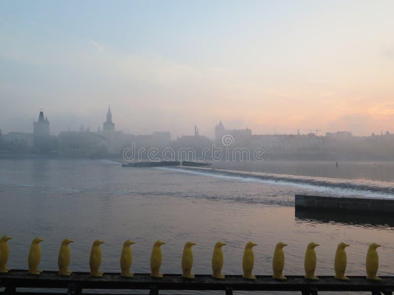 在布拉格捷克共和国的有雾的早晨 免版税库存图片