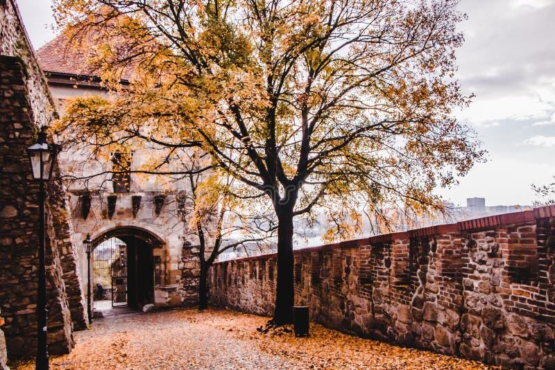 在布拉索夫城堡的秋天 免版税库存照片