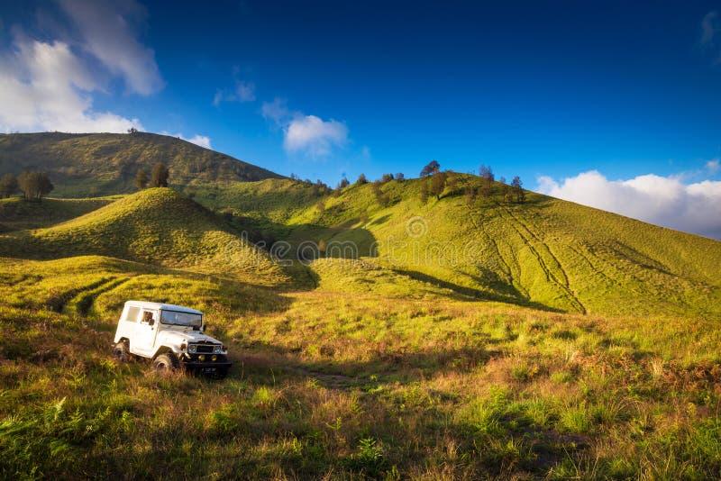 在布罗莫火山火山的大草原在Bromo腾格尔塞梅鲁火山国家公园 免版税库存照片