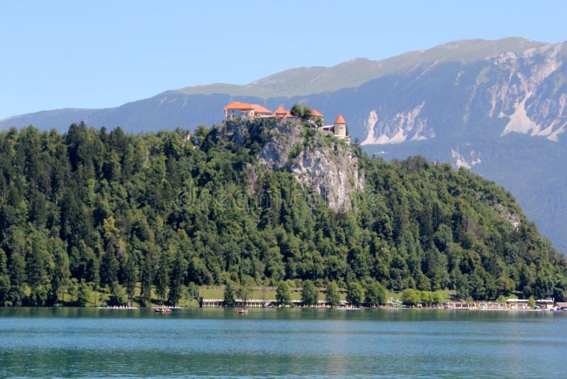《布莱德湖,斯洛文尼亚,欧洲》 库存照片