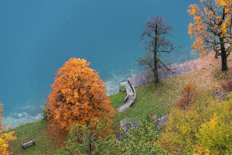 在布莱德湖的秋天叶子 免版税库存图片