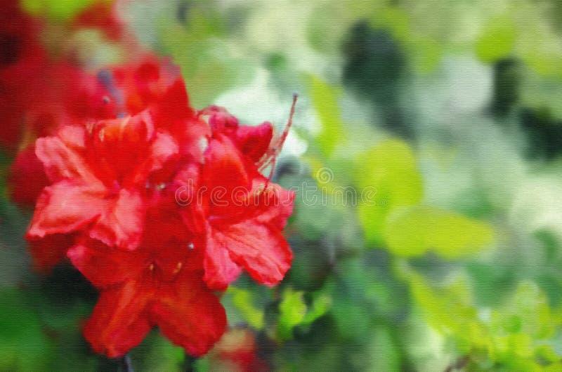 在帆布明亮的红色杜鹃花关闭的绘画,春天鲜花 库存图片