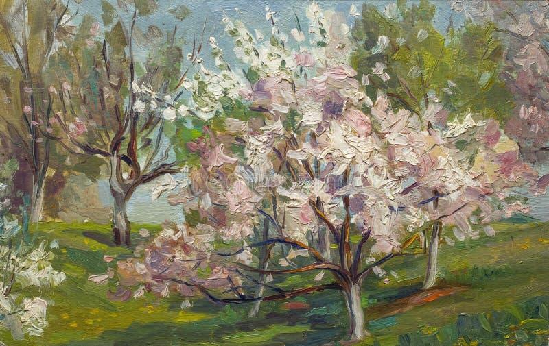 在帆布的美丽的原始的油画开花的树 库存图片
