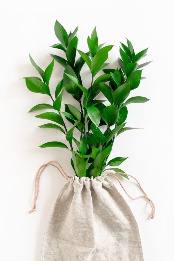 在帆布袋子的假叶树属分支 免版税库存照片