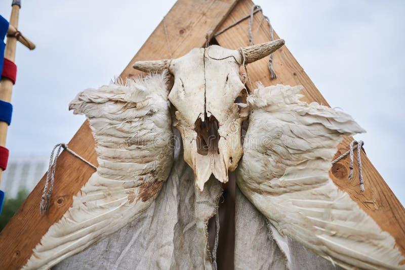 在帐篷上的母牛头骨 库存照片