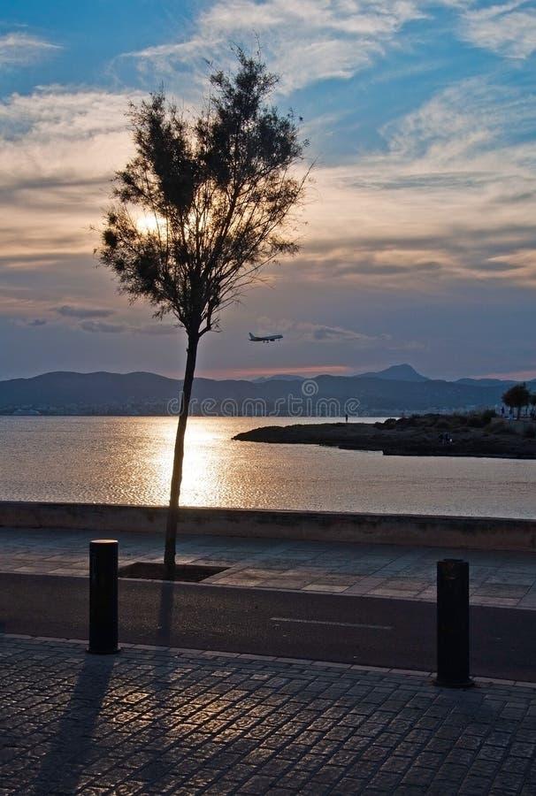 在帕尔马海湾的美好的日落视图 图库摄影