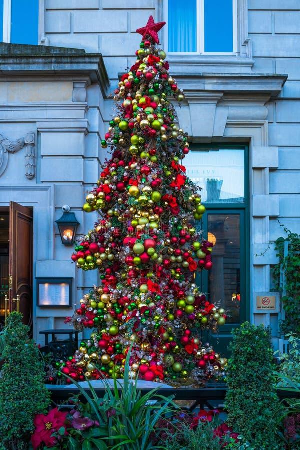 在常春藤市场之外的圣诞树,餐馆在Covent加尔省 免版税库存图片
