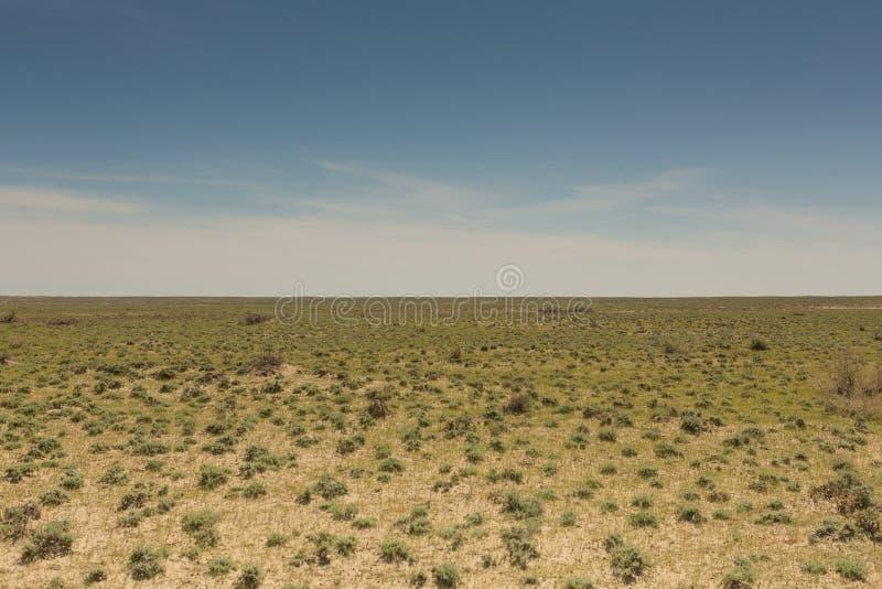 在干咸海位置的干草原 哈萨克斯坦,2019年 免版税库存照片