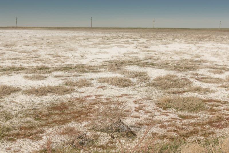 在干咸海位置的盐沼 哈萨克斯坦,2019年 库存图片
