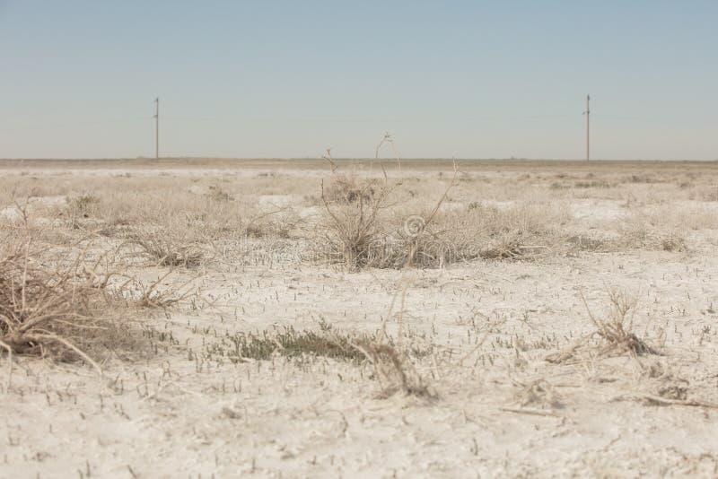 在干咸海位置的盐沼 哈萨克斯坦,2019年 免版税库存照片
