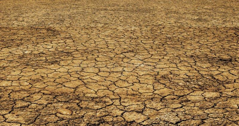 在干旱的土壤的没有生活 库存图片
