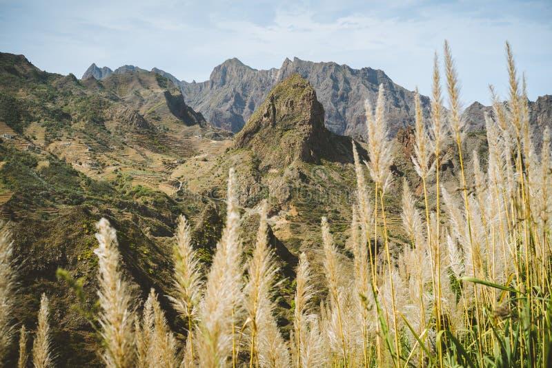 在干燥干旱的沙漠风景的巨大的贫瘠山峰 重创的Ribeira 圣安唐岛海岛,佛得角 免版税库存照片