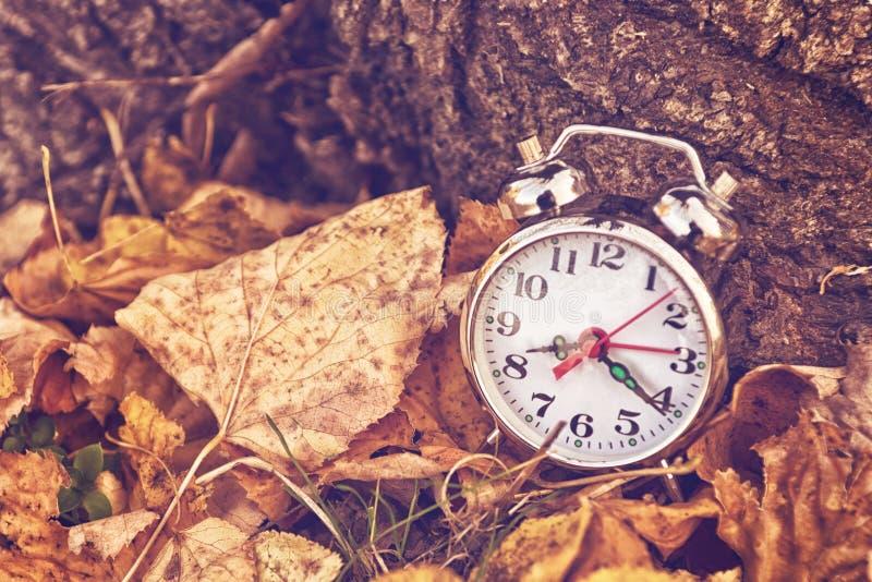 在干燥秋叶的葡萄酒闹钟 免版税库存照片