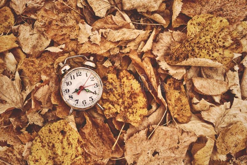 在干燥秋叶的葡萄酒闹钟 库存照片