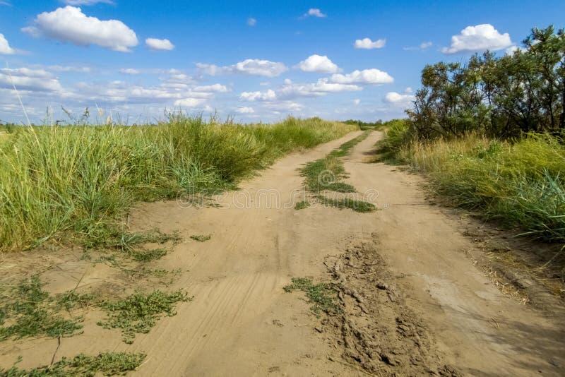 在干草原的土路在天空蔚蓝和云彩背景  免版税图库摄影