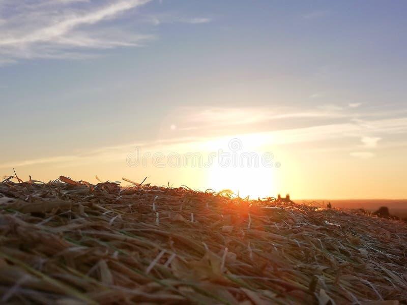 在干草捆上面的日落 免版税库存照片